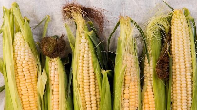 Vue de dessus de la disposition du maïs