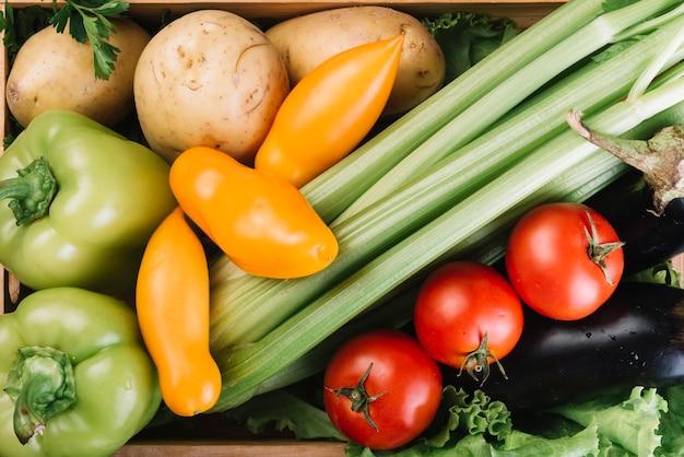 Vue de dessus de divers légumes frais