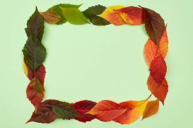 Vue de dessus du beau cadre de feuilles d'automne avec espace copie