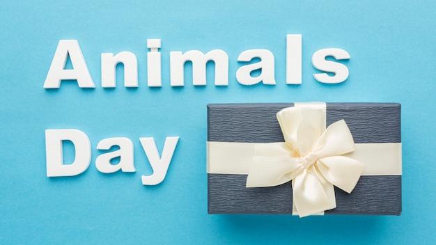 Vue de dessus du cadeau avec un arc pour la journée des animaux