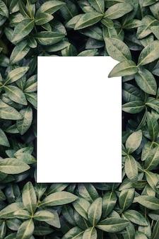 Vue de dessus du cadre carré, disposition créative de plantes tropicales et feuilles de pervenche avec feuille de papier. formulaire pour carte d'invitation.
