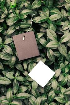 Vue de dessus du cadre fait de feuilles de pervenche et d'étiquettes pour les vêtements de différentes formes avec espace de copie pour le logo. notion naturelle.