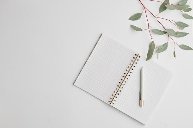 Vue de dessus du cahier ouvert avec des pages blanches et un stylo avec une branche de plante avec des feuilles vertes à proximité sur un bureau blanc