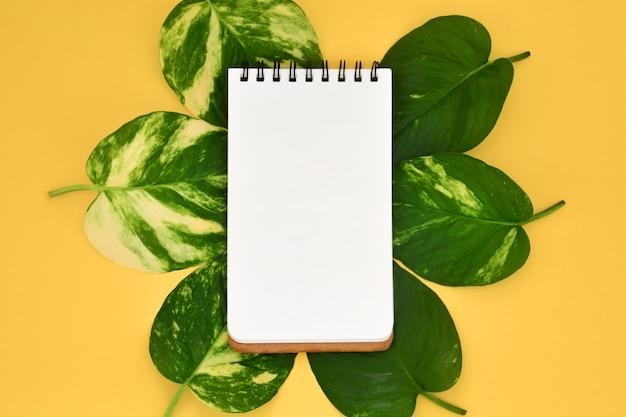 Vue de dessus du cahier vierge ouvert vide sur des feuilles de pothos dorées