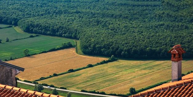 Vue de dessus du champ cultivé