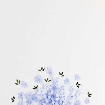 Vue de dessus du concept floral avec espace copie