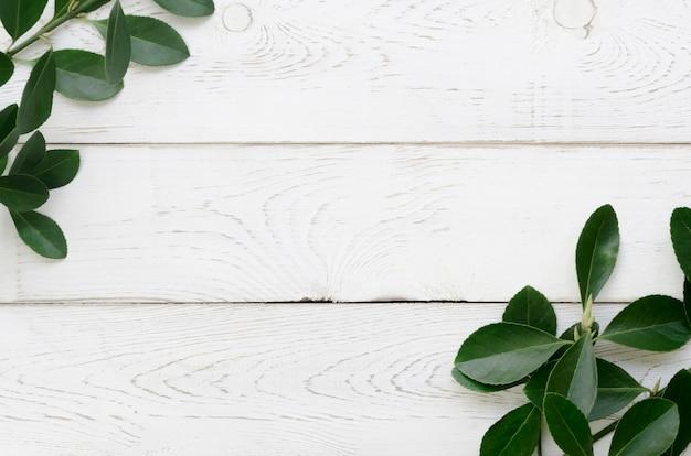 Vue de dessus du concept leafs avec espace copie