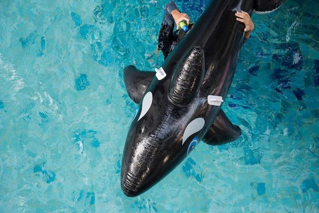 Vue de dessus du dauphin gonflable sur la piscine