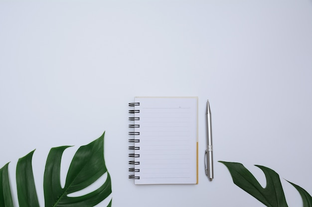 Vue de dessus du livre ouvert. livre ouvert avec un stylo sur fond blanc
