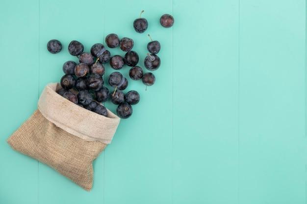 Vue de dessus du petit fruit astringent globuleux sombre prunelles sur un sac en toile de jute sur fond bleu