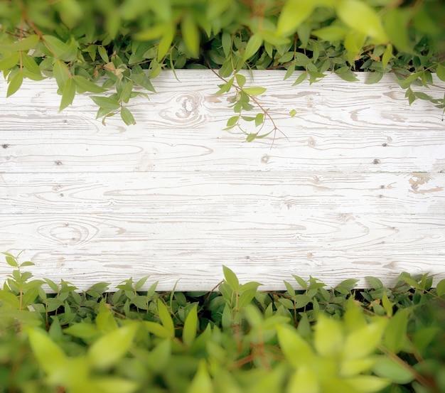 Vue de dessus du plancher en bois blanc en fond de jardin