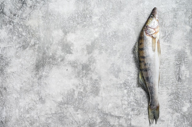 Vue de dessus du poisson cru