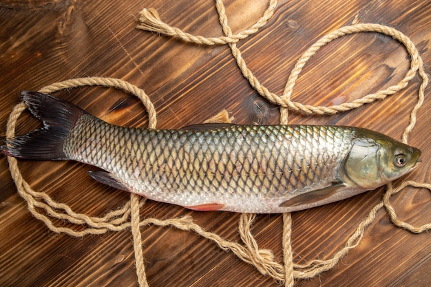 Vue de dessus du poisson frais avec des cordes sur un bureau en bois