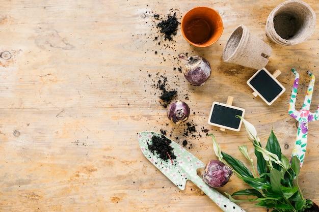 Vue de dessus du pot de fleurs; fourche de pitch; pelle; bulbe d'oignon; sol; et ardoise vierge; feuilles sur une surface en bois