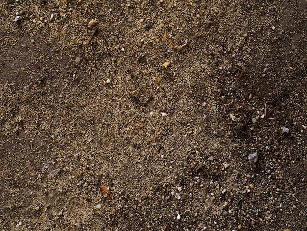 Vue de dessus du sol organique frais
