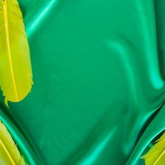 Vue de dessus du tissu de carnaval avec des plumes