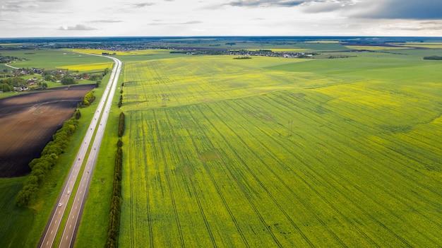 Vue de dessus du vert semé en biélorussie.agriculture en biélorussie.texture.