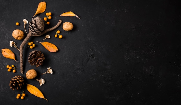 Vue de dessus des éléments d'automne avec des pommes de pin et de l'espace de copie