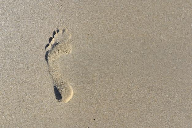 Vue de dessus sur l'empreinte dans le sable