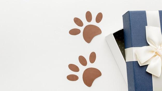 Vue de dessus des empreintes de pattes avec cadeau pour la journée des animaux