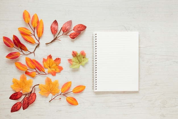 Vue de dessus des feuilles d'automne avec un cahier