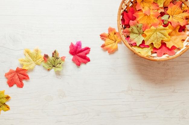 Vue de dessus des feuilles d'automne dans un panier