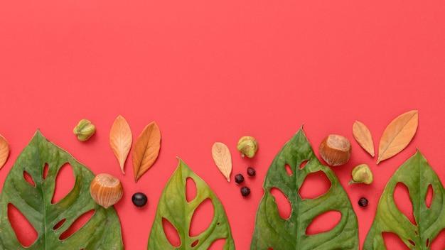 Vue de dessus des feuilles d'automne multicolores et espace copie