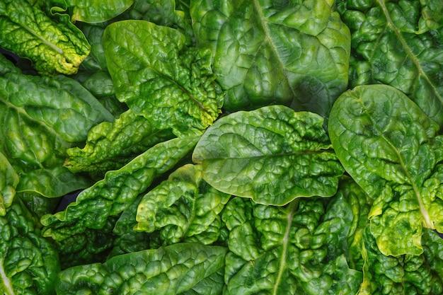 Vue de dessus sur les feuilles d'épinards biologiques frais des aliments verts sains et fond végétalien