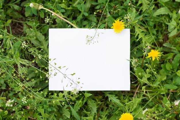 Vue de dessus des feuilles avec note en papier