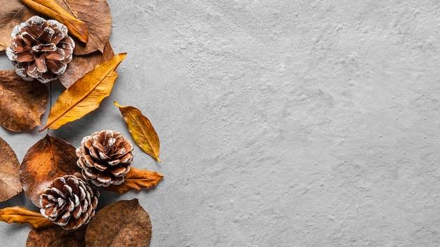 Vue de dessus feuilles sèches et conifères