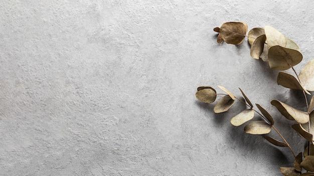 Vue de dessus des feuilles sèches avec espace copie