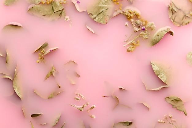 Vue de dessus feuilles vert pâle dans l'eau colorée rose