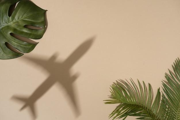 Vue de dessus des feuilles vertes avec l'ombre de l'avion sur la couleur du sable