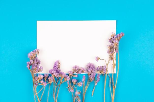 Vue de dessus de fleur statice avec carte de papier blanc sur fond bleu