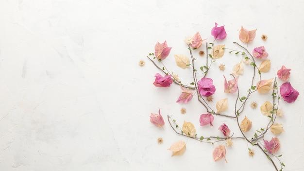Vue de dessus des fleurs d'automne avec espace copie