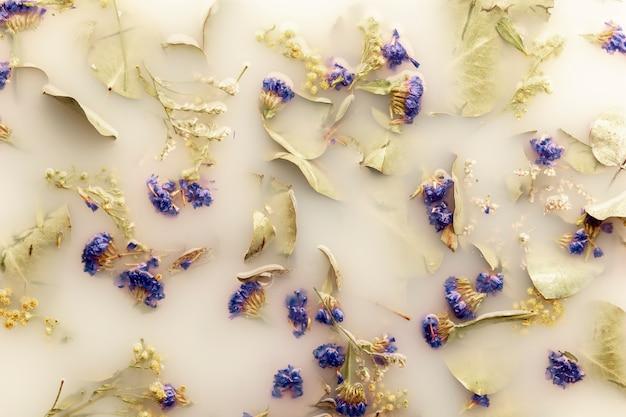 Vue de dessus des fleurs bleu foncé dans de l'eau de couleur blanche