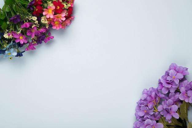 Vue de dessus des fleurs blosoom avec copie-espace