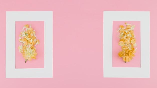 Vue de dessus des fleurs avec cadre