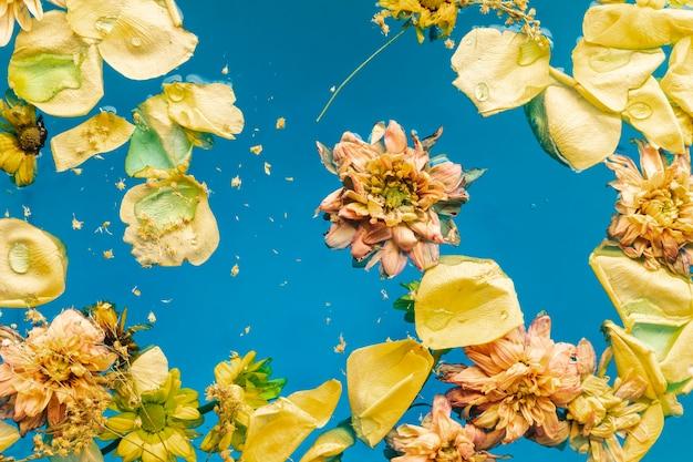 Vue de dessus des fleurs jaunes dans l'eau