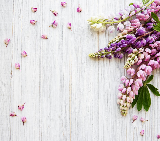 Vue de dessus fleurs lupins roses