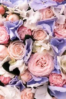 Vue de dessus de fleurs magnifiquement colorées