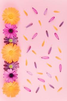 Vue de dessus fleurs et pétales
