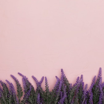 Vue de dessus des fleurs pour la fête des mères avec espace copie