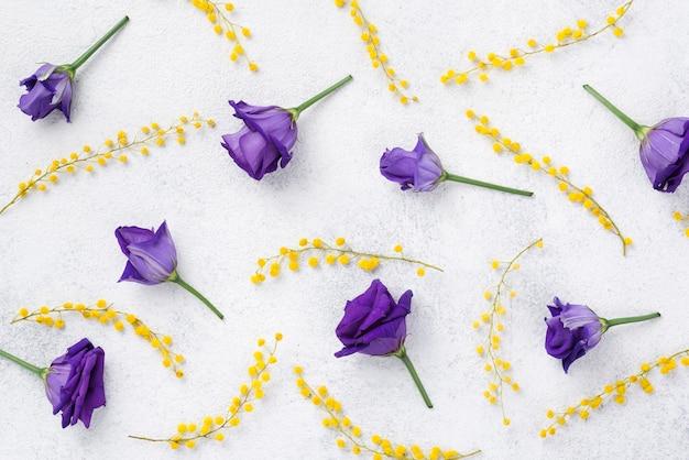 Vue de dessus des fleurs de printemps violettes