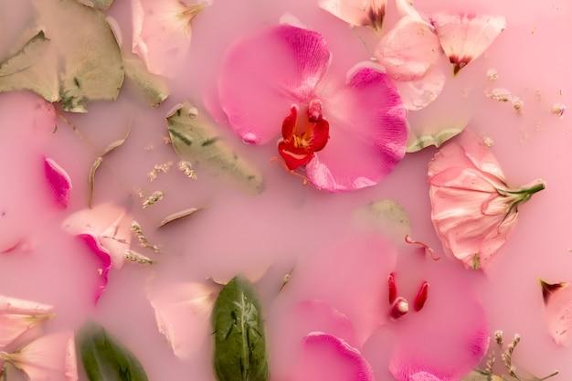 Vue de dessus des fleurs roses dans de l'eau colorée rose