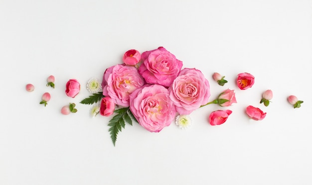 Vue de dessus fleurs roses