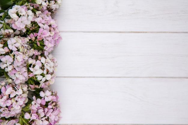 Vue de dessus des fleurs sur une surface blanche