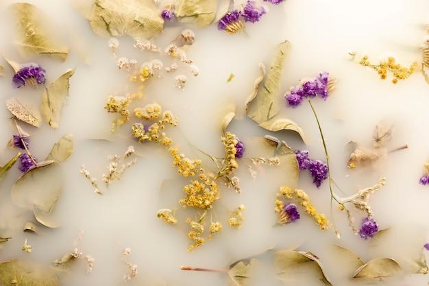 Vue de dessus des fleurs violettes dans de l'eau de couleur blanche