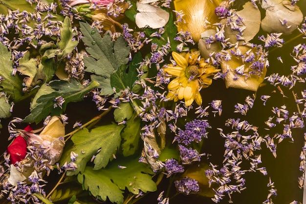 Vue de dessus des fleurs violettes et jaunes dans l'eau noire