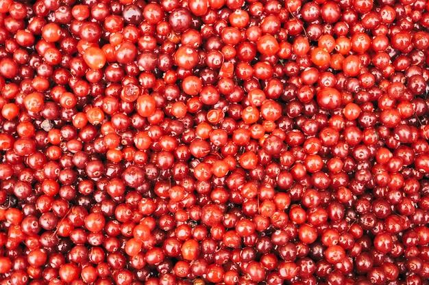 Vue de dessus de fond de canneberges rouges mûres